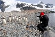 Jonathan photographing Gentoo Penguins in Antarctica.