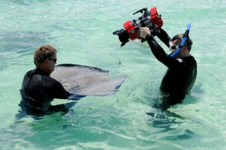 Jonathan filming Southern Stingrays on Grand Cayman. Photo by Christine Bird.