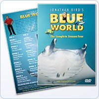 Jonathan Bird's Blue World: Season 4 DVD