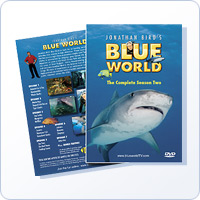 Jonathan Bird&#8217;s Blue World: Season 2 DVD