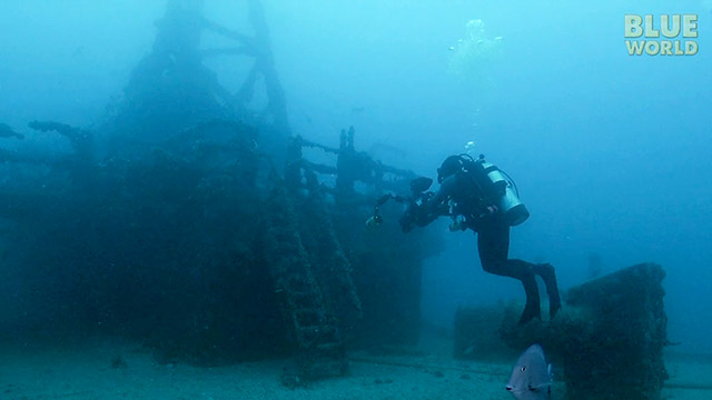 Latest Webisode: Artificial Reefs