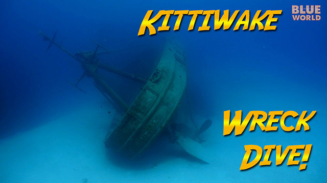 Latest Webisode: Return to the Kittiwake Wreck